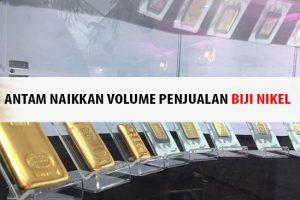 Antam Naikkan Volume Penjualan Biji Nikel